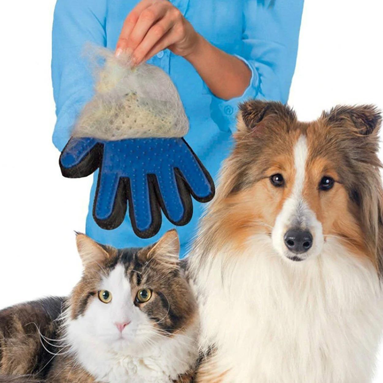 f/ür Welpen Deko Yosemite Hundeanh/änger f/ür Hundehalsband Accessoire Hunde